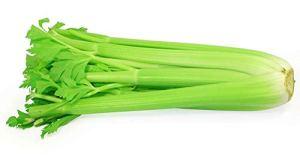 Farmerly Celery Tall Utah 52-70 1000 Seeds Culinary Herbs and Spices EZ Grow
