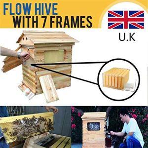 MUKE Beekeeper Débit Automatique Beehive, Honey Fow Maison avec 7 Cadres de débit