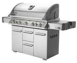 Napoleon Lex 730 Barbecue en acier inoxydable