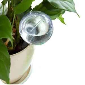 Prevently Plante d'arrosage Globes, Appareil d'arrosage Automatique de création Houseplant Pot Ampoule Globe Jardin Maison d'arrosage, Claire