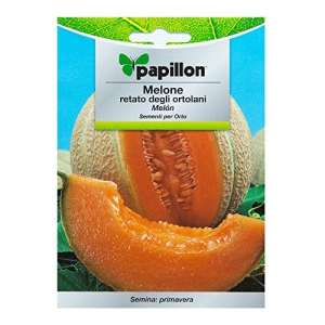 Semences Melon Cantalupo (3G)