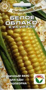 AGROBITS Corn Cloud (S Garden)