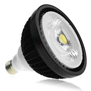 BloomLED Ampoule horticole LED – 20W – SpectraBULB X20 LEDs Citizen – Croissance et Floraison – E27 – Simple à Utiliser – Performante sur 30cm x 30cm – Spectre Complet