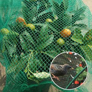 LANGYINH La Protection en Nylon de Plante de Jardin de Filet de Filet de Filet Anti-Oiseau confectionnant la Maille de Filet de Fruits, Vert,8x150m