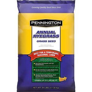 Pennington Annual Ivraie Retail Sac pour Overseed chaude Saison d'herbes, 11,3kilogram 25 LB