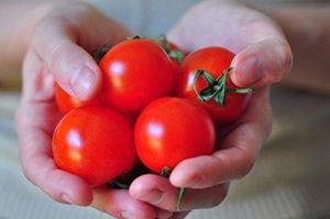 25 graines de tomate Campari, douce vigne tomates Légumes fruits exotiques Graine de plantes