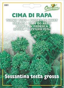 Hortus Ortovivo – semi di Cima di rapa sessantina testa grossa