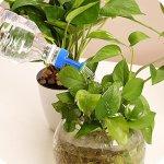Hukezhu 1 Pack de Bouteilles Arrosage pour Bouteilles en Plastique Tête Arrosoir Arrosoir Bouteille Arrosage Ménager Outil d'arrosage pour Plantes dans Les Pots Bleu