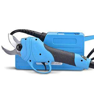 GTTBS-jd 1Cisailles Électriques, Ciseaux Rechargeables Outils de Coupe pour Le Jardinage Domestique Outil Coupe Branches Grossières pour Arbre 25 Mm (Branche Dure) ~ 30 Mm (Branche Souple),Aset