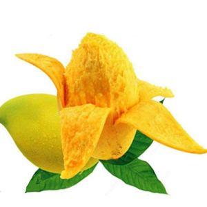 Sisaki Graines de mangue tropicale vivace Bonsai Graines de plantes d'extérieur bonsaï Fruits et arbres fruitiers