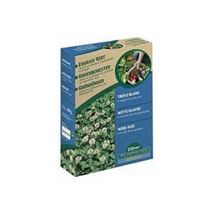 Vilmorin – Trèfle Blanc Engrais Vert 500gr 250m2