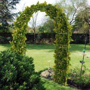 2.4M acier jardin rose arche pour Grimpant Plantes Treillis