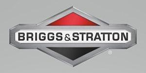Briggs & Stratton 595509 Carburateur d'origine OEM