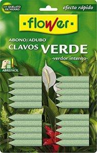 Flower-Engrais 15501 Clous Vert 30 x 2