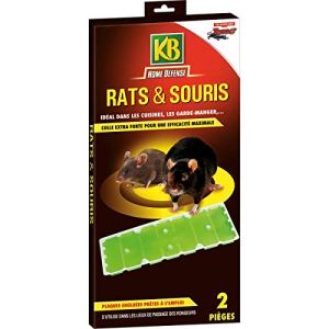 KB Piège à Glue Pour Rats et Souris x2