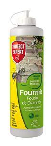 PROTECT EXPERT FPNAT100 Fourmis Poudre De Diatomée 100g Longue Durée, Action par Simple Contact