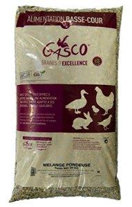 Gasco Mélange Pondeuse pour Élevage/Agriculture Urbaine 20 kg – Lot de 1
