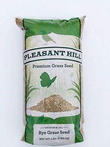 GEOPONICS Pleasant Hill Premium Perennial Rye Grass Seed 4lbs