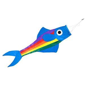 Manche à air – Fisch BLUE – résiste aux UV et aux intempéries – Dimension : 91x38x12cm – incl. émerillon à roulement à billes