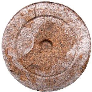 Pastilles de Tourbes Jiffy x10 – Peat Pellets