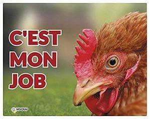 Vadigran Panneau Photo Tête de Poule pour Élevage/Agriculture Urbaine