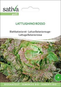 Sativa Feuilles de batavia Rouge – Latungs hino Rosso, bio, 1 sachet portion, 1,25 g