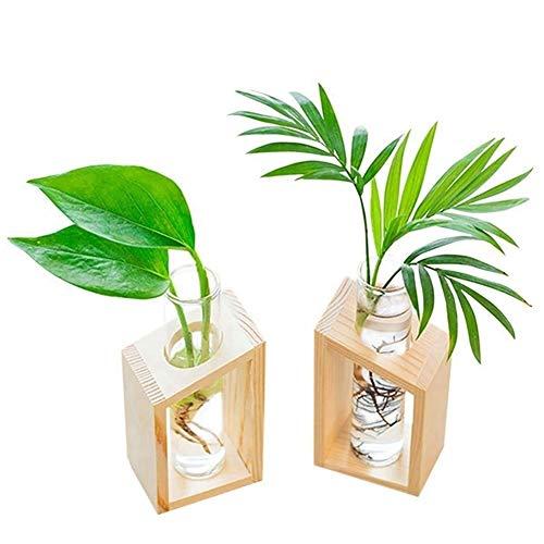 WBFN Pots de Fleurs Pots Verre Cristal Tube à essai Vase en Pots à Fleurs Stand en Bois for Plantes hydroponiques Jardin Décoration (Color : As Shown)