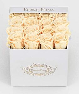 100% Real Roses That Last A Year – The Perfect Unique Gift for Women, Men, Anniversary Gift, Birthday Gift – White Velvet (Champagne)