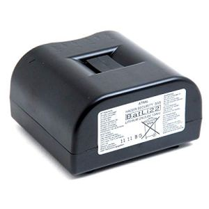 Daitem – Pile alarme DAITEM BATLI22 3.6V 13Ah – Pile(s)