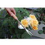 Dinglong Dispositif De Désherbage Maisons De Jardin à La Main Weeder INOX Manuel Weed Puller Bend-Proof, PP & TPR Ergon