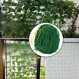 LEISURE TIME Treillis de Filet de Jardin pour Plantes grimpantes Filet de Culture de Fleurs de Jardin, de Pois, de Concombre, de tomates, de Haricots et de Plantes de Vigne