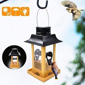 LEJIA Parrot Corbeau Feeder Décor Parrot Cour Chargeur Solaire Oiseaux LED Hanging Feeder extérieur Balcon Oiseaux Station d'alimentation