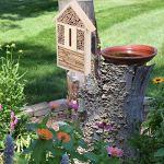 Maison d'abeille d'insecte, maison d'abeille, non-toxique sûr durable pour des insectes pour des abeilles