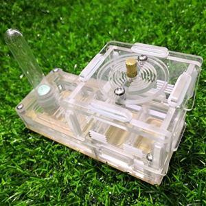 WCX Le Petit Groupe de Fourmis Yakeli Avion Animaux Fourmis Atelier d'insectes Box Fourmis Ferme Ant Nest