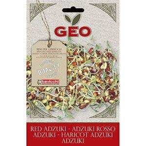 Geo Graine à Germer Haricot Adzuki Brun 12,7 x 0,7 x 20 cm