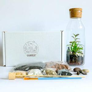 Kit terrarium avec récipient en verre et couvercle en liège – Mini jardin – Idée cadeau – Kit bricolage Kit Only