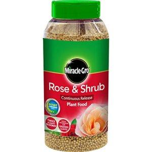 Scotts Miracle-Gro Engrais en granulés Action rapide pour fleurs Rose et arbustes, 3kg 1 kilograms