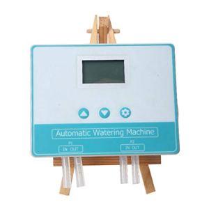 Amusingtao Minuterie Automatique de système d'irrigation Goutte à Goutte de Double Pompe à Eau de Dispositif d'arrosage sûr