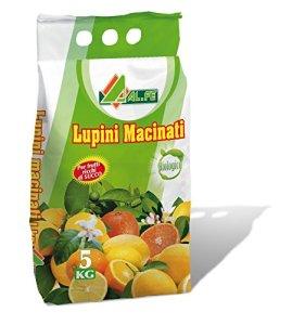 Engrais biologique-BASED SOL LUPINS POUR LES AGRUMES ET Plantes acidophiles DANS UN PACK DE 5 KG