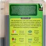 Envii SeaFeed Xtra – Engrais Organique Liquide Algues – 1L