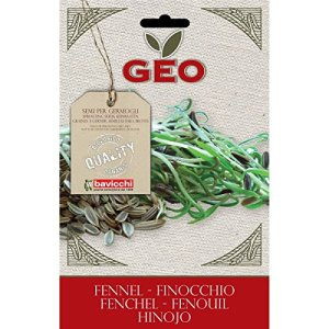Geo Graine à Germer Fenouil Brun 12,7 x 0,7 x 20 cm