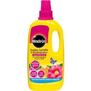Miracle-Gro Azalée, Camellia & Rhododendron Nourriture Liquide concentré pour Plantes 1L