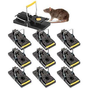 QUTAII Lot de 10 pièges à Rats Professionnels pour la Cuisine et la Maison