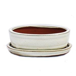 Bonsai Bol avec sous assiette Taille 2–Beige clair–ovale–Modèle o7–L 15,5cm–B 12cm–H 4,5cm
