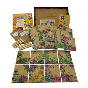 Calendrier de l'Avent pour les semences biologiques 2020 – Arbustes colorés, fleurs d'été et fleurs sauvages aimés par les insectes