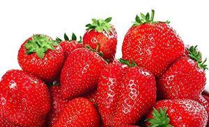 Graines de fraises pour plantes de fruits rouges et grimpantes – 100 graines de fruits de fraises rouges