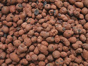 Jasker Blähton Granulés 8-16 mm | Boules de Jardinage pour Culture hydroponique et orchidées | Fin | (8-16 mm Blähton, 50 L)