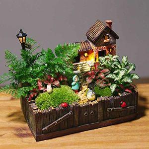 meixiang DIY Mini Plantes en Pot, Ornements Créatifs De Plantes Vertes, Micro-Paysage Plantes Mousse Vert 1