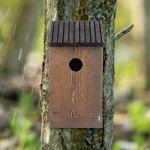 Nichoir à Oiseaux, nichoir à Suspendre Non Toxique 12 x 12 x 23,5 cm, Accessoire de Jardin Magnifique et sûr pour Les Amoureux de la Nature du Jardin en Plein air