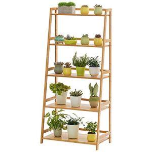 Plante Shelf 5 Tier Ladder Shelf Usine Support Portable d'angle Support de Rangement étagères étagères intérieur extérieur (Color, Size : 70x40x150cm)